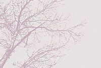 הדפס של עץ מסדרת בוסטון בגווני ורדרד לבנדר